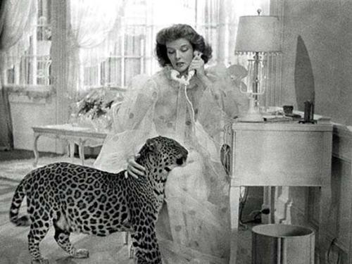 BringingUpBaby-leopard-vintage-movie