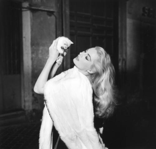 la-dolce-vita-1960-001-anita-ekberg-with-kitten_0
